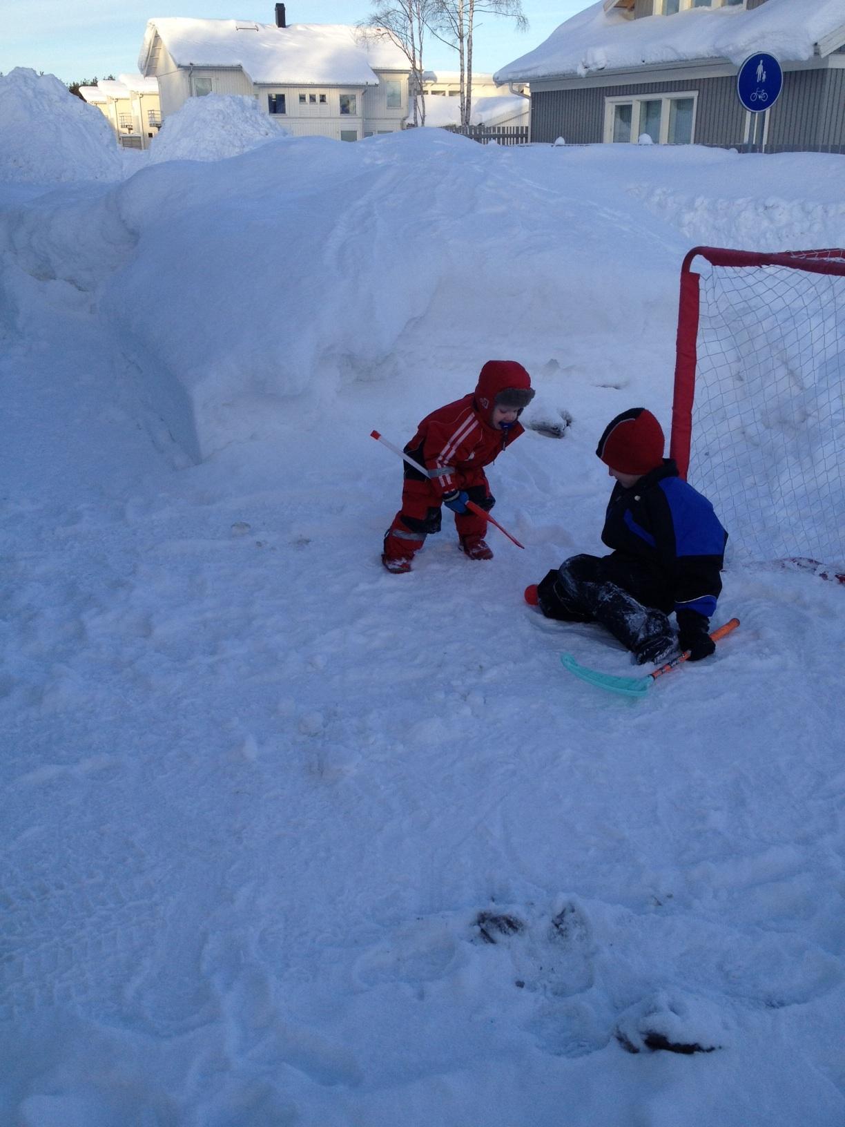 hockeyspelande